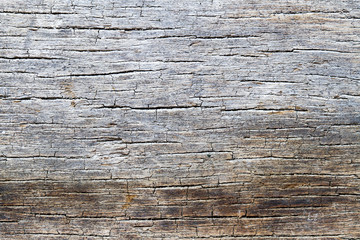 Old rotten wood texture background