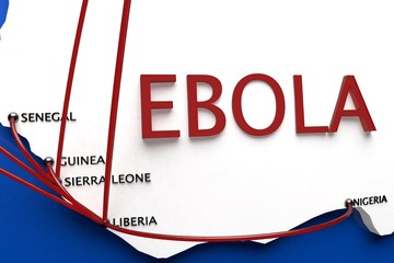 Ebola in the Outbreak Countries in Africa