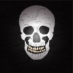halloween skull on the dark background