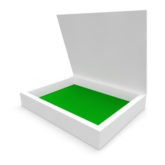 Blank white box for the disk