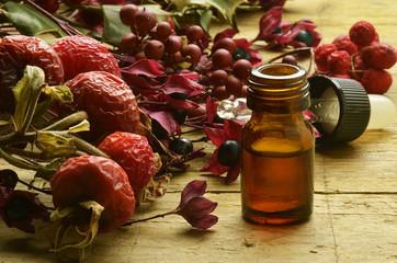Travarstvo Ziołolecznictwo Herbalismo Pflanzenheilkunde