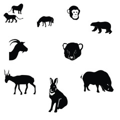horse,rabbit,goat,saiga,polar bear,cheetah cub,monkey,wild boar,