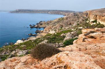 Il-Majjistral Nature and history park - Malta