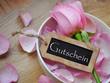 Gutschein - Rose in weißer Schale