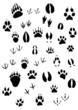 Animal footpints set