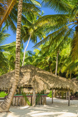 Coast of Caribbean Islands with covered with a thatched roof hut