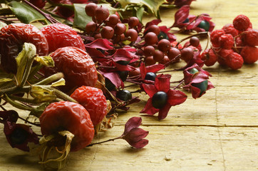 Travarstvo Ziołolecznictwo Herbalismo Erboristeria צמחי מרפא