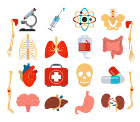 Stock vector medicine anatomy flat icon set
