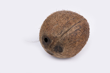 Beautiful coconut in a studio (background, wallpaper)