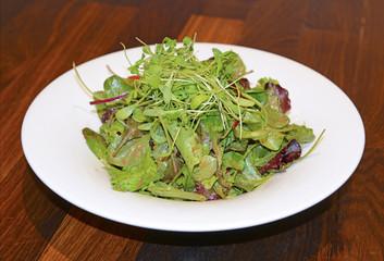 Fresh green salad on plate