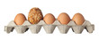 Different kind of egg