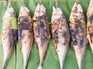 grilled torpedo scad ( Finny scad ) fish - Thai food