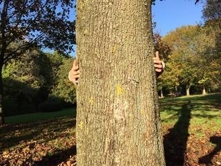 Kinderhände umarmen Baum