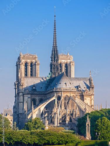 Fototapeta Kathedrale Notre-Dame de Paris