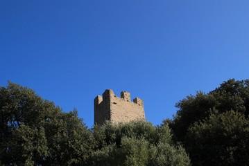 Vue du château de Hyères-les-Palmiers.(Var)