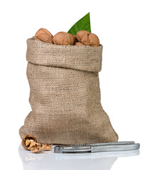 Walnuts in burlap bag on white