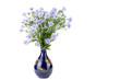 花瓶に挿したクジャクソウの花