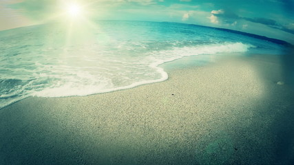 Sunny coastline and waves