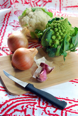 Ingredients for a vegetable soup