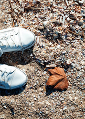 Feet in white sneakers and autumn fallen leave on the beach with