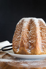 Traditional italian Christmas cake Pandoro