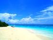 canvas print picture - Spiaggia Bianca Caraibi