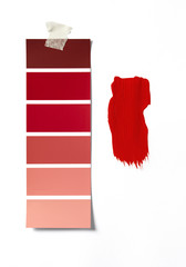 Paint Swatch