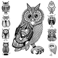 original artwork of owl, ink hand drawing in ethnic style collec