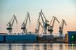 Industrial cargo cranes in the dock - 71816478