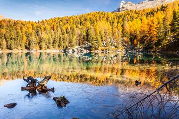 Lac da Saoseo - Grigioni - Svizzera