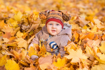 Cute baby in autumn leasves.