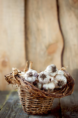Garlic in a basket on wooden table.