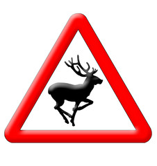 Deer crossing traffic sign