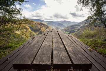 picnic table in black forest
