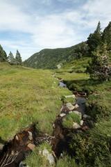 Ruisseau dans le Donezan,Pyrénées