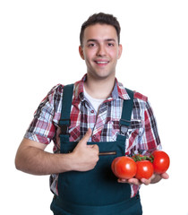 Junger Gärtner empfiehlt Tomaten