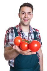 Junger Gärtner zeigt frische Tomaten