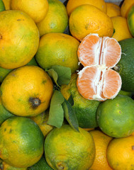 tangerines with green Peel from sicily  for sale at the local ma