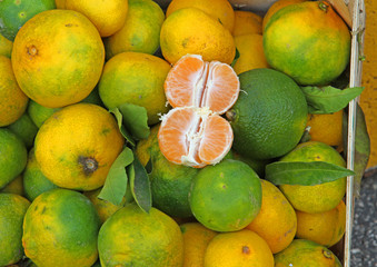tangerines with green Peel from sicily  for sale at the market