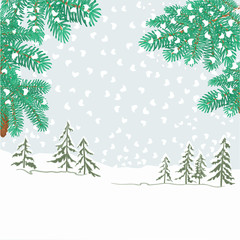 Spruce branches with snowflakes vector