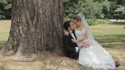 Enamoured newlyweds sitting at the trunk of a tree in the park