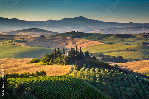 Scenic Tuscany landscape at sunrise, Val d'Orcia, Italy - 71827879