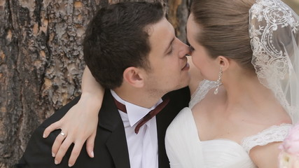 Newlyweds sitting on the grass near the trunk of an old tree and