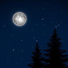 Full moon vector