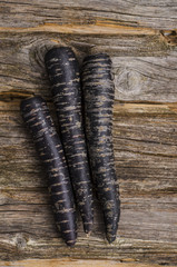 Möhre, Urkarotte, schwarze möhre
