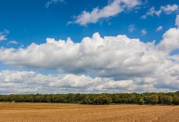 Dormagen Horrem - Felder an der BAB