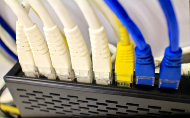 Close-up of computer network plugs connected to a router / switc