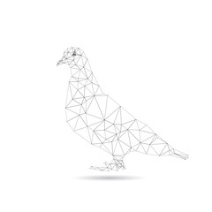 Illustration of abstract origami pigeon