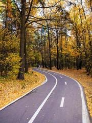 bike path in autumn