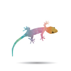 Abstract geckos isolated on a white backgrounds